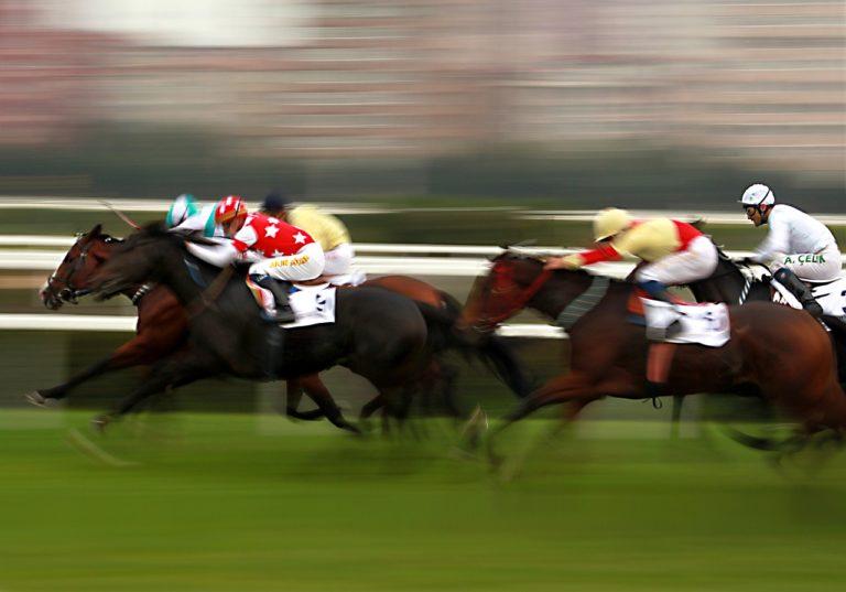 голландская система ставок на конные скачки